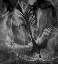 京急と火の鳥雲2