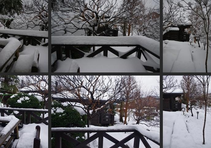 2014-02-14 2014-02-14 002 028-horz-vert