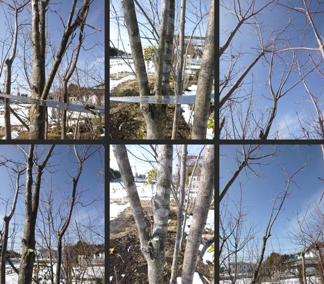 2014-02-19 2014-02-19 001 059-horz-vert