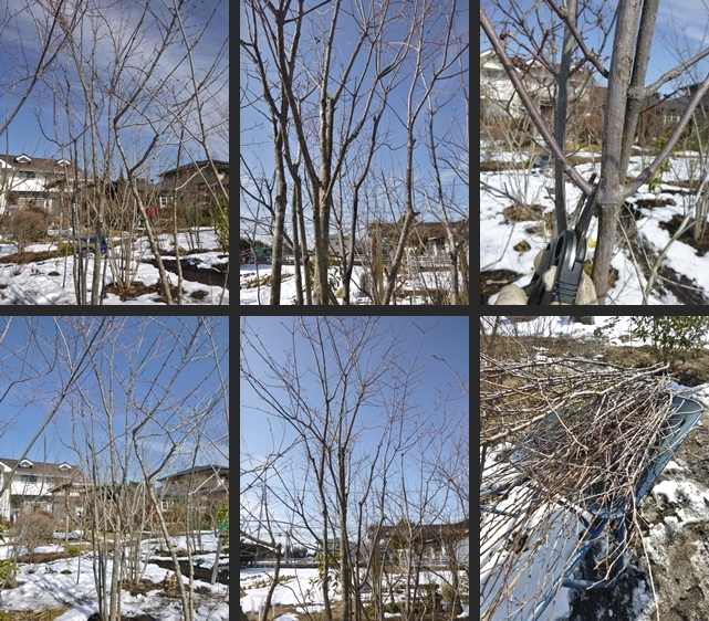 2014-02-19 2014-02-19 001 054-horz-vert