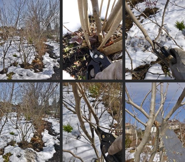 2014-02-19 2014-02-19 001 003-horz-vert
