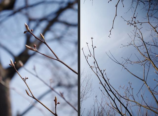 2014-02-23 2014-02-23 001 088-horz