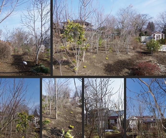 2014-02-23 2014-02-23 001 044-horz-vert