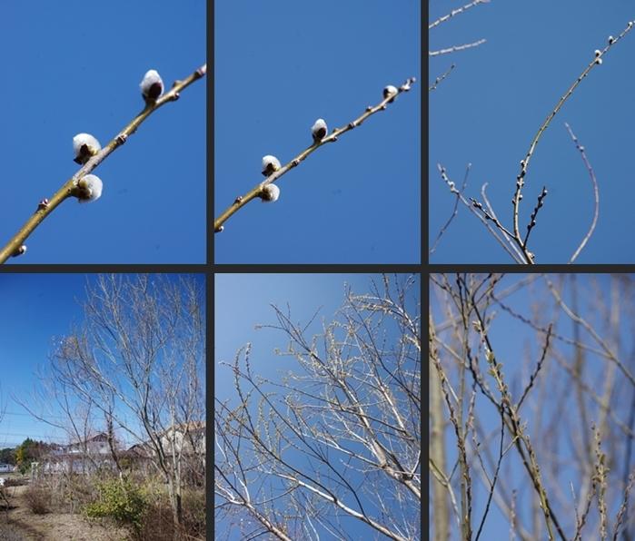 2014-03-15 2014-03-15 001 070-horz-vert