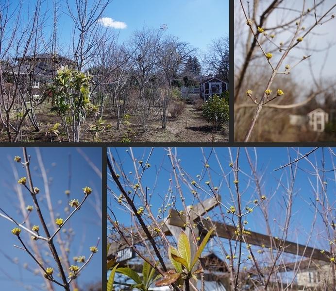 2014-03-15 2014-03-15 001 004-horz-vert