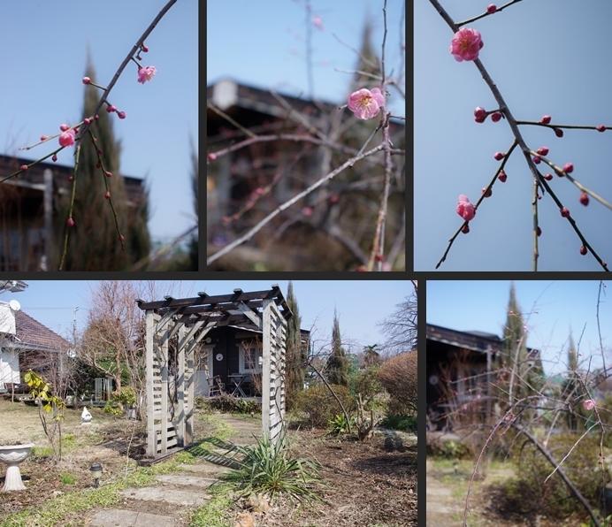 2014-03-16 2014-03-16 001 030-horz-vert