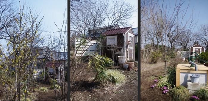 2014-03-17 2014-03-17 001 039-horz-horz