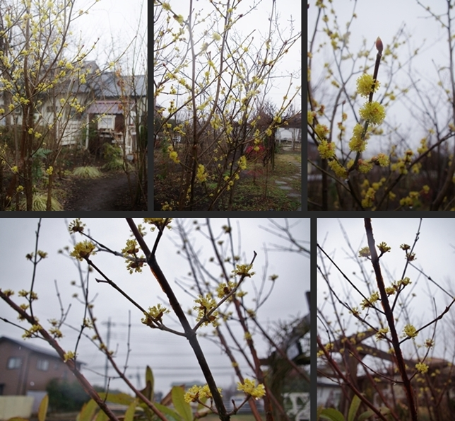 2014-03-20 2014-03-20 001 068-horz-vert