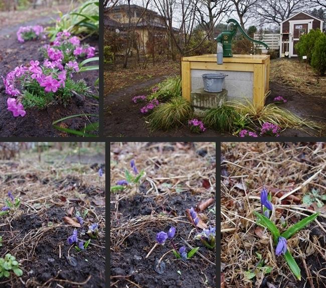 2014-03-20 2014-03-20 001 012-horz-vert