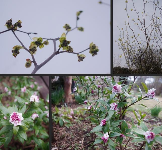 2014-03-18 2014-03-18 003 073-horz-vert