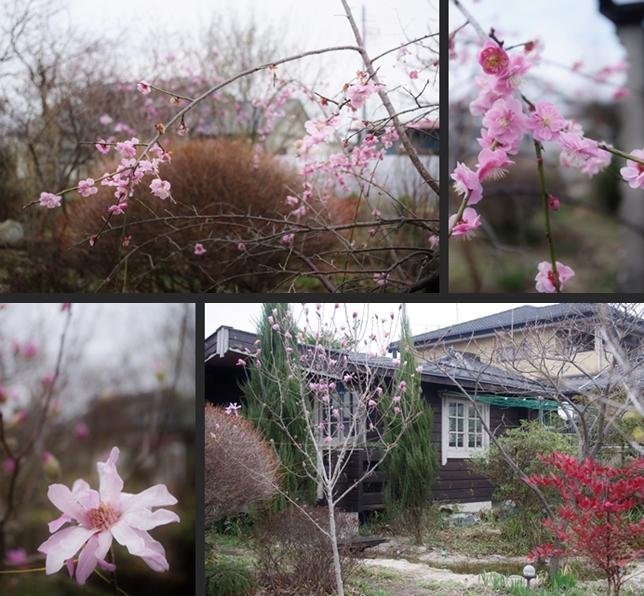 2014-03-18 2014-03-18 003 019-horz-vert
