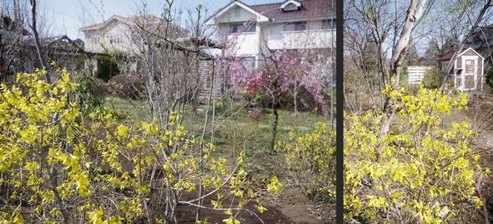2014-03-18 2014-03-18 007 134-horz-horz