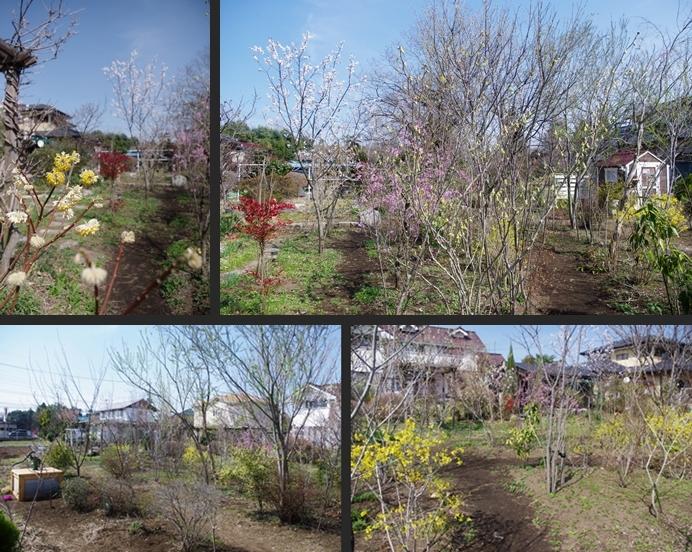 2014-03-18 2014-03-18 007 126-horz-vert