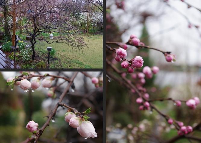 2014-04-03 2014-04-03 001 002-vert-horz