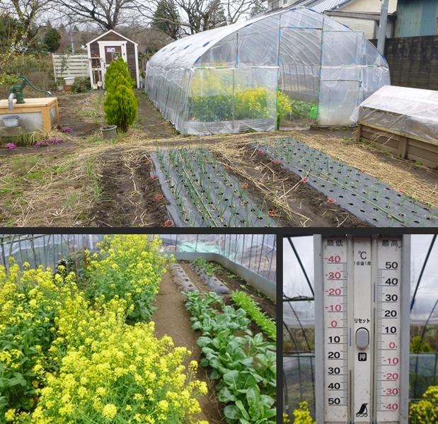 2014-04-04 2014-04-04 001 004-vert