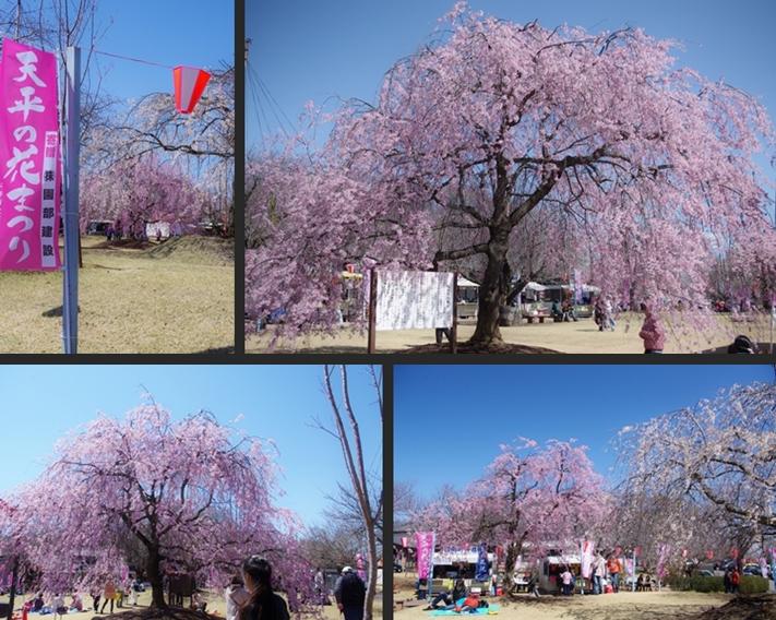 2014-04-05 2014-04-05 001 055-horz-vert