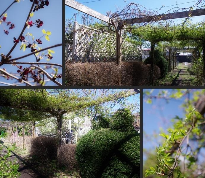 2014-04-05 2014-04-05 001 113-horz-vert