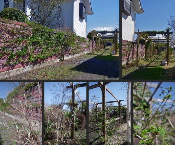 2014-04-05 2014-04-05 001 093-horz-vert