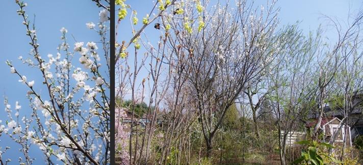 2014-04-08 2014-04-08 002 051-horz-vert