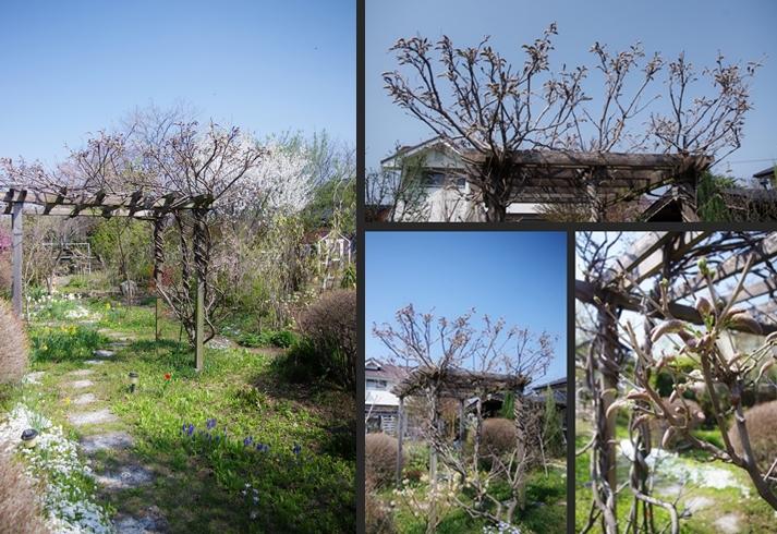 2014-04-15 2014-04-15 001 126-horz