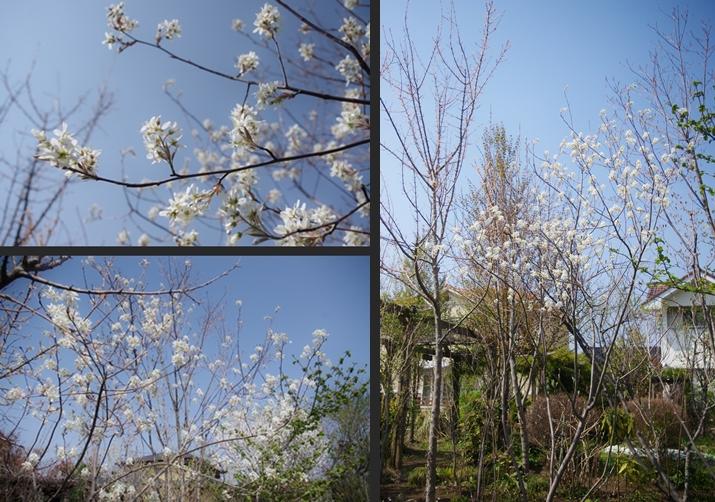 2014-04-15 2014-04-15 001 110-vert-horz