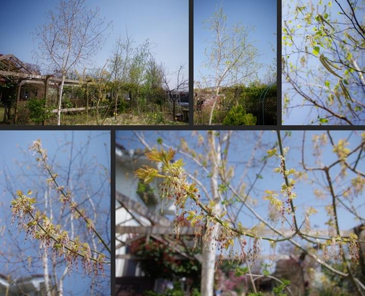 2014-04-15 2014-04-15 001 018-horz-vert