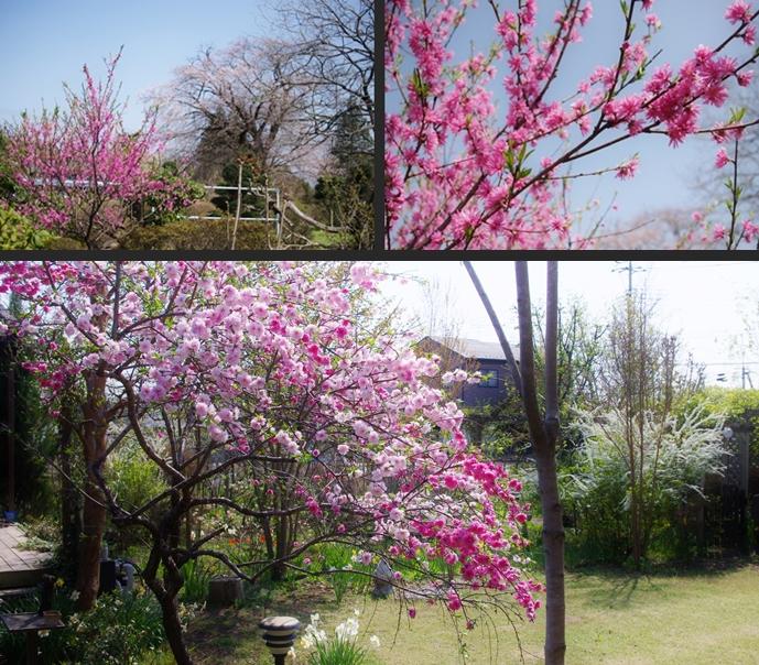 2014-04-15 2014-04-15 001 064-horz-vert