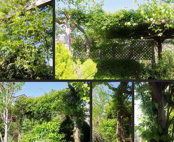 2014-04-24 2014-04-24 003 048-horz-vert