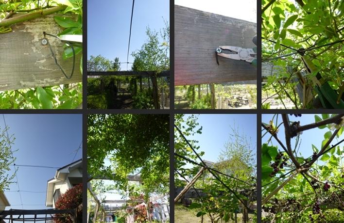 2014-04-24 2014-04-24 001 031-horz-vert