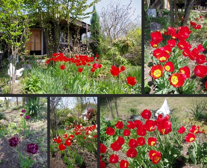 2014-04-24 2014-04-24 004 012-horz-vert