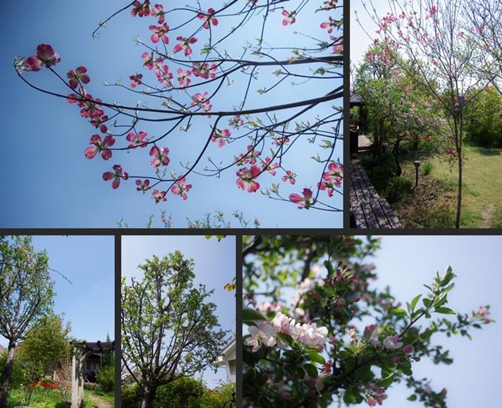 2014-04-24 2014-04-24 004 007-horz-vert