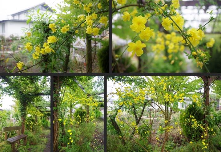 2014-04-24 2014-04-24 008 128-horz-vert