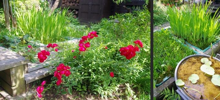 2014-05-30 2014-05-30 001 077-horz-horz