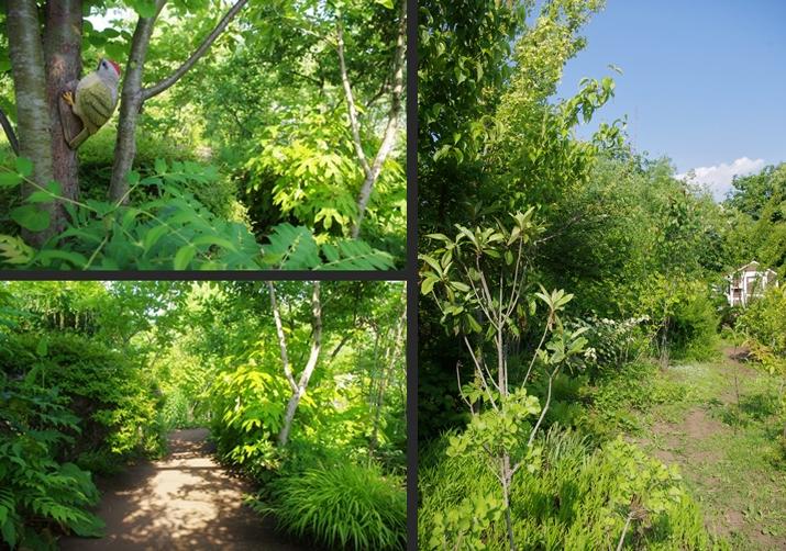 2014-05-31 2014-05-31 001 068-vert-horz