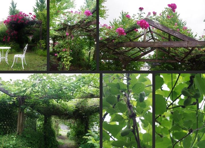 2014-06-06 2014-06-06 001 086-horz-vert