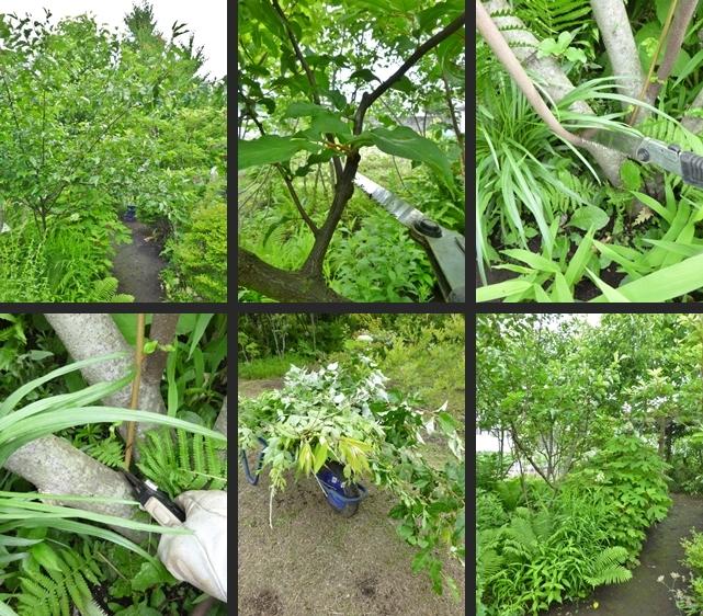 2014-06-11 2014-06-11 001 003-horz-vert