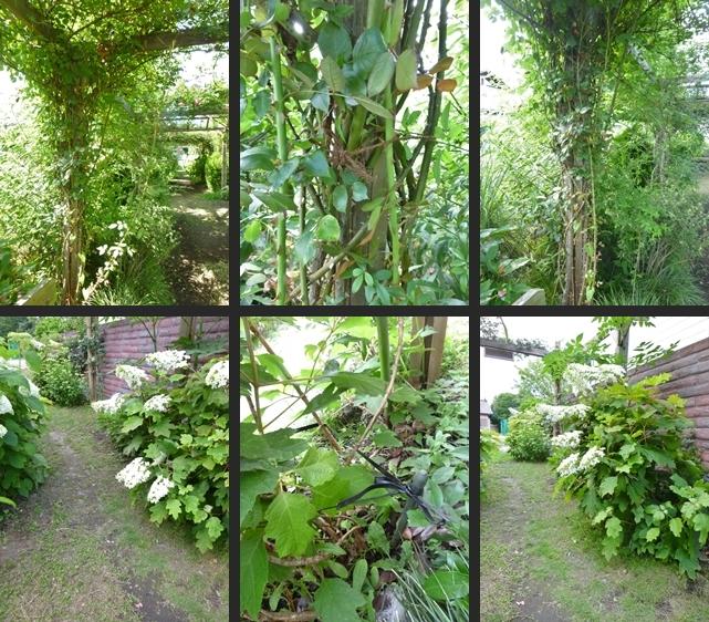 2014-06-11 2014-06-11 004 006-horz-vert