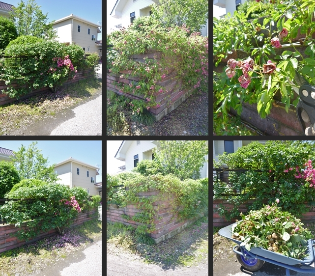 2014-06-11 2014-06-11 003 007-horz-vert