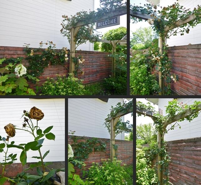 2014-06-11 2014-06-11 003 001-horz-vert