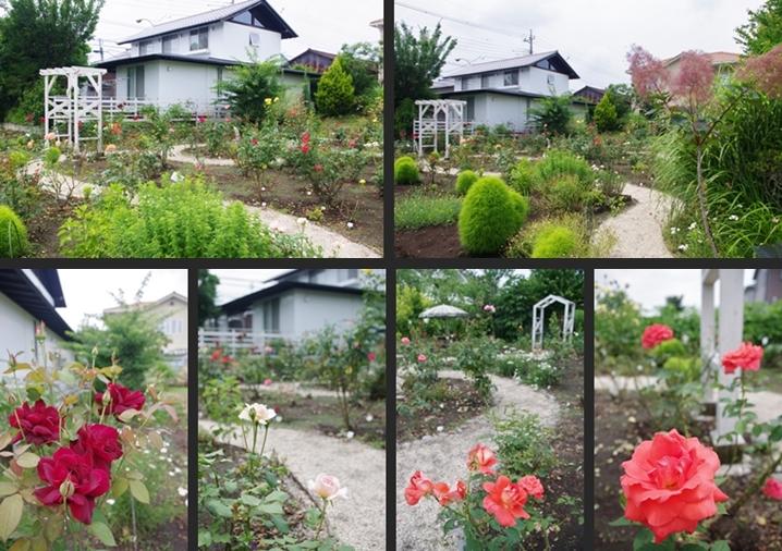 2014-06-20 2014-06-20 002 050-horz-vert