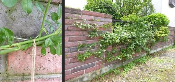 2014-06-20 2014-06-20 001 039-horz-vert