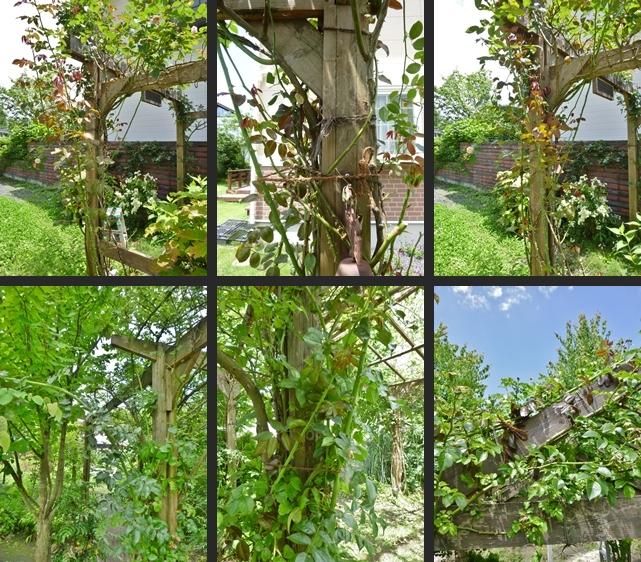 2014-07-01 2014-07-01 001 058-horz-vert