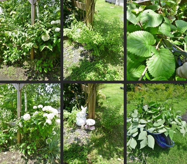 2014-07-01 2014-07-01 001 066-horz-vert