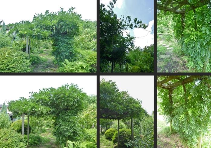 2014-07-01 2014-07-01 001 087-horz-vert
