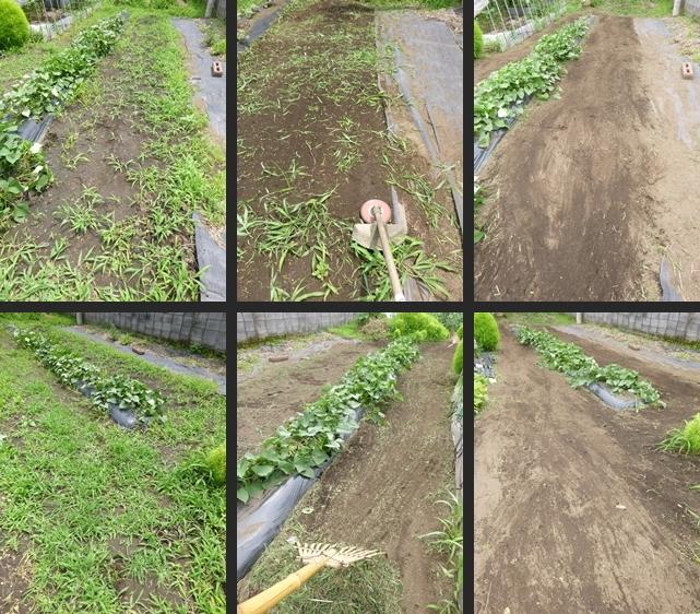 2014-07-03 2014-07-03 001 025-horz-vert