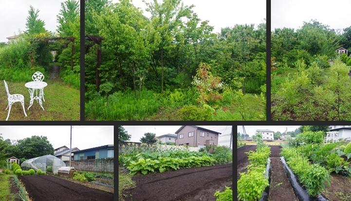 2014-07-07 2014-07-07 001 036-horz-vert