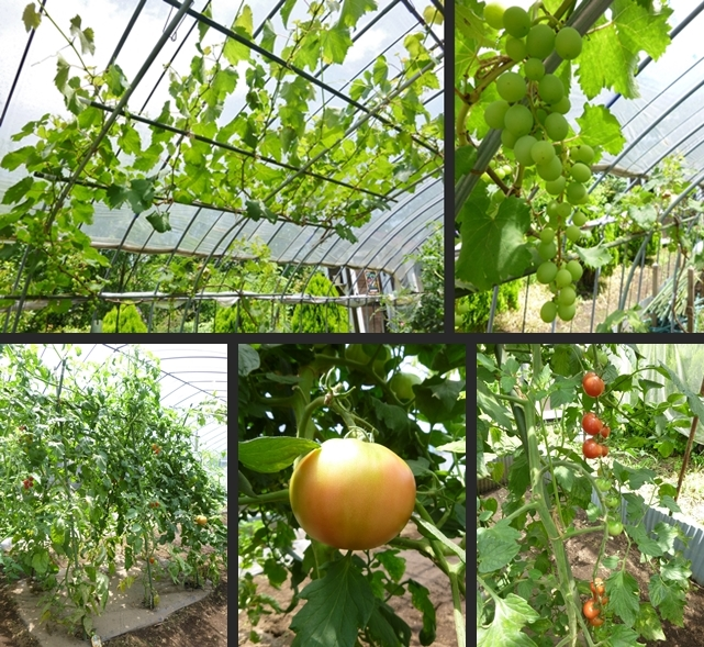 2014-07-08 2014-07-08 001 060-horz-vert
