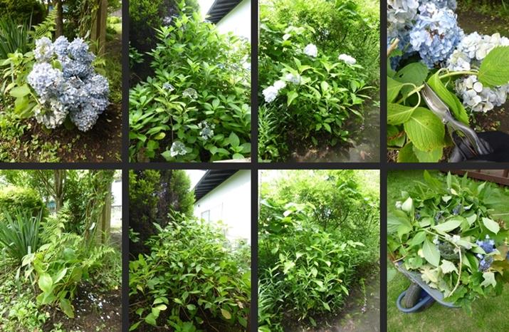 2014-07-11 2014-07-11 001 002-horz-vert
