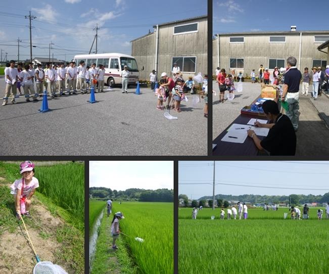 2014-07-12 2014-07-12 001 008-horz-vert