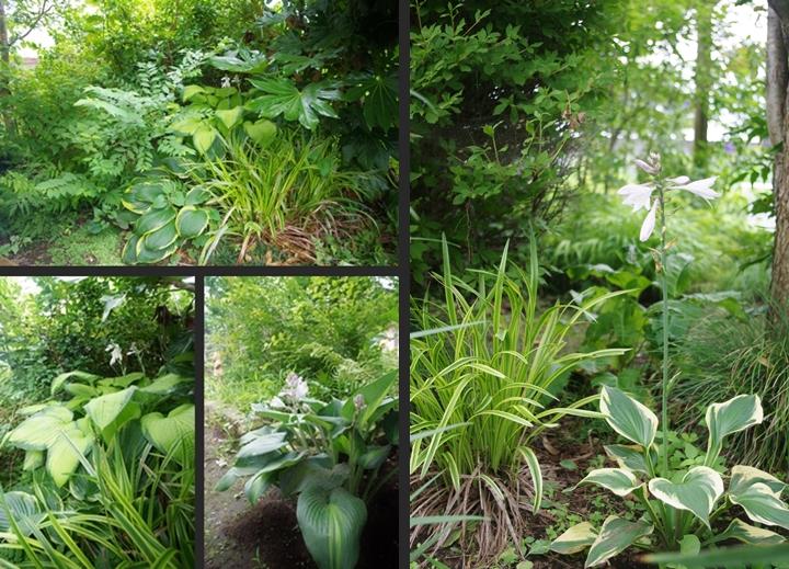 2014-07-09 2014-07-09 002 002-vert-horz